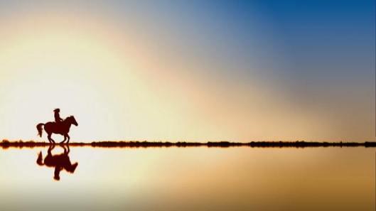 pexels-photo-1125774