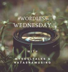 wordlessWednesdayLogo